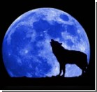 В конце месяца на небе можно будет увидеть голубую Луну