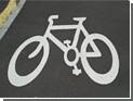 Психолог и шизофреничка воровали велосипеды в Королеве