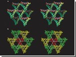 Треугольники из ДНК вырастили до миллиметровых размеров
