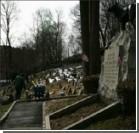Кладбище домашних животных признано историческим