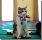 Премьер Великобритании уволил кота за профнепригодность. ФОТО