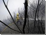 Португалия попросила у ЕС воздушные суда для тушения лесных пожаров