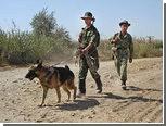 Таджикистан объявил о желании вступить в Таможенный союз