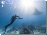 На Google Street View появились подводные панорамы