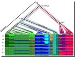 """Генетики подтвердили уникальность носителей """"щелкающих языков"""""""