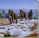 В Якутии обнаружены живые клетки мамонта