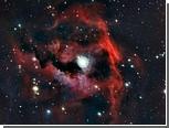 Астрономы сфотографировали голову Чайки