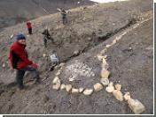 """На Северном полюсе найдены останки морского """"монстра"""", жившего 150 миллионов лет назад"""