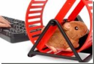 USB-хомяк засвидетельствует вашу работоспособность