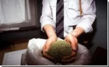 На Соломоновых островах обнаружена рекордная плантация марихуаны