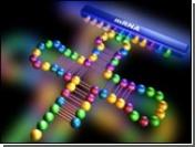 Нобель по медицине - за генетическое открытие