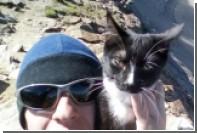 Мужчина два месяца дрессировал котенка Графа перед восхождением на Эльбрус