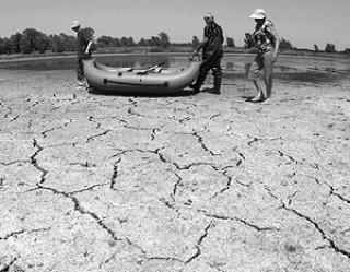 Число погибших от российской жары вызывает сомнения