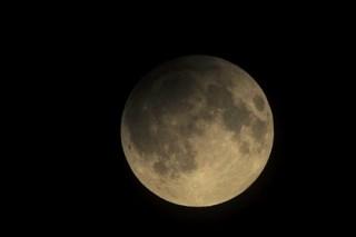 На Украине заявили о готовности к полетам на Марс и Луну