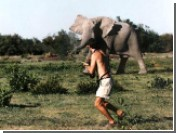 Жители Индии снова страдают от пьянства слонов - три человека затоптаны насмерть