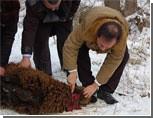 На Урале прокуратура выгнала мусульманскую организацию из школы, запретив проводить религиозные ритуалы