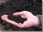 Народные «кнопкодавы» в разы увеличили налог на землю