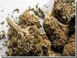 Жители Голландии получили от властей открытки с запахом марихуаны