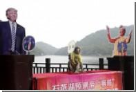 Обезьяна-пророк из Шанхая предсказала результаты выборов в США