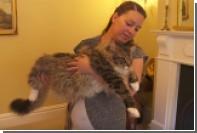 Самая длинная кошка Великобритании попала в книгу рекордов Гиннеса
