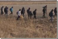 Десятки мигрантов попытались прорваться в Хорватию