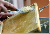 Роскачество выявило некачественный мед
