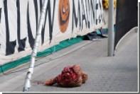Дрезденское «Динамо» оштрафовали за брошенную фанатами на поле голову быка