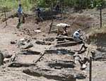 9 южноуральских археологических памятников стали неприкосновенными