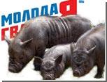"""Свиньи строили партию """"Груша"""", """"Российскую партию Пионеров"""" и """"Партию единая Россия"""", - как развлекаются свердловские молодогвардейцы"""