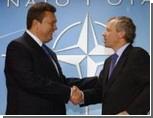 Украина потратила более миллиона долларов на мультики про НАТО