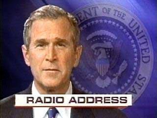 Буш призвал американцев преодолеть политические разногласия ради победы в Ираке