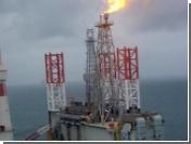 Sakhalin Energy жалуется, что надзорные органы мешают компании работать