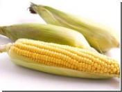 Мировые цены на пшеницу и кукурузу установили рекорд десятилетия