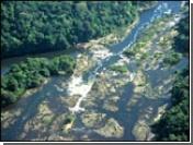 Тропические леса Амазонки возьмут под охрану