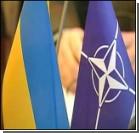 Германия против быстрого принятия Украины и Грузии в НАТО