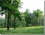 В администрацию президента передана резолюция защитников Химкинского леса