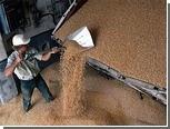 Чиновник оценил качество зерна в 64 миллиона рублей взятками
