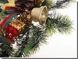 Британец решил жениться на рождественской елке