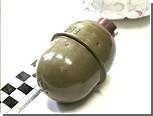 В Приморье осужденный сбежал от правосудия с помощью гранаты