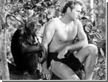 Шимпанзе Тарзана умер в возрасте 80 лет