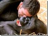 Ученые обнаружили воздействие щекотки на животных