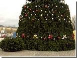 Главная елка Калининграда оказалась бракованной