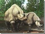 Волны эволюции связали с климатом в Северной Америке