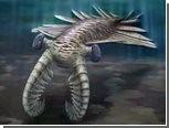 Палеонтологи доказали зоркость аномалокарисов