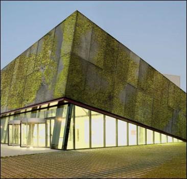 В Италии изобрели биологический бетон