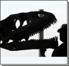 Ученые продолжают спорить о размерах динозавров