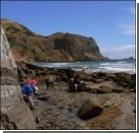 Найдены окаменелые останки доисторических обитателей приполярного края