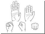 Кулаки назвали двигателем эволюции человека