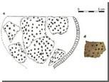 Найдены инструменты первых сыроделов