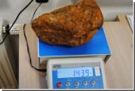 Калининградец пытался провезти контрабандой в Польшу огромный кусок янтаря